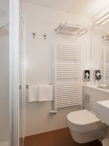 All Suite Island Hotel Istra (12)